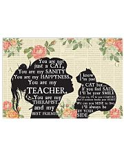 Teacher Just A Cat Poster 17x11 Poster front