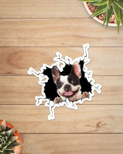 French Bulldog Crack Sticker - Single (Vertical) aos-sticker-single-vertical-lifestyle-front-07