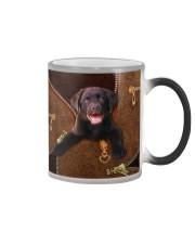 Chocolate Labrador Color Changing Mug thumbnail