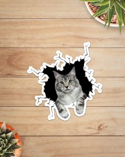 Maine Coon Crack Sticker - Single (Vertical) aos-sticker-single-vertical-lifestyle-front-07