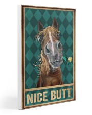 Horse Nice Butt 20x30 Gallery Wrapped Canvas Prints thumbnail