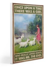 Goats - Once Upon A Time 20x30 Gallery Wrapped Canvas Prints thumbnail