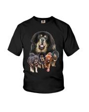 GAEA - Tibetan Mastiff Running 1603 Youth T-Shirt thumbnail