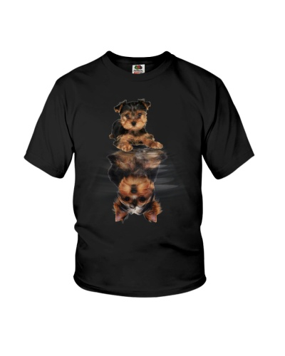 Yorkshire Terrier In Dream