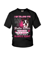 Boston Terrier Baby  Youth T-Shirt thumbnail