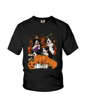 Bernese Mountain Dog Great Halloween - 03 Youth T-Shirt thumbnail