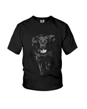 GAEA - Labrador Retriever Cool - 0809 - 44 Youth T-Shirt thumbnail