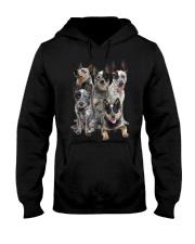 Australian Cattle Dog Five Hooded Sweatshirt thumbnail