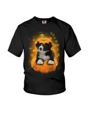 NYX - Border Collie Pumpkin Halloween - 39 Youth T-Shirt thumbnail