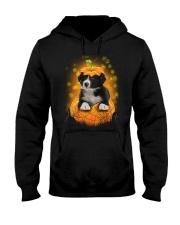 NYX - Border Collie Pumpkin Halloween - 39 Hooded Sweatshirt thumbnail