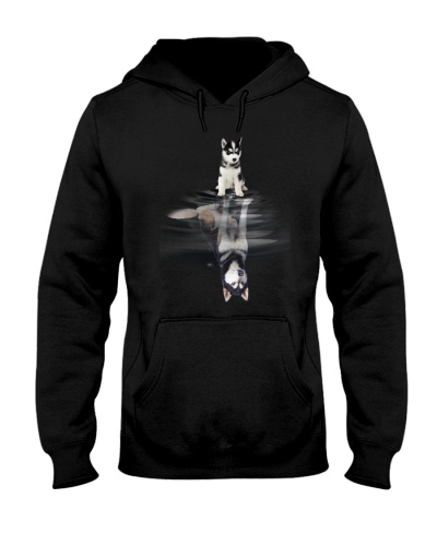 Siberian Husky Dream