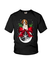 NYX - Beagle Noel - 0510 - B2 Youth T-Shirt thumbnail