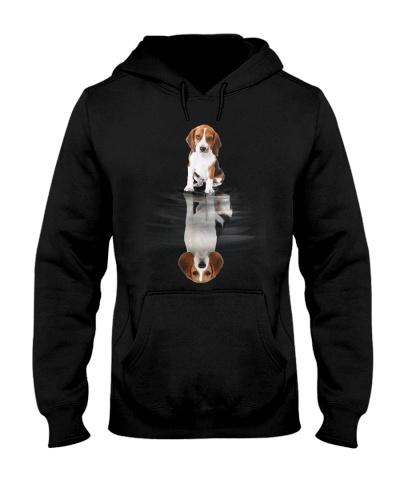 Beagle Dreaming