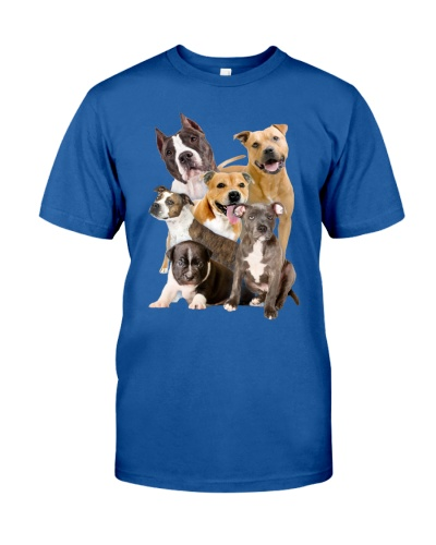 American Staffordshire Terrier Five