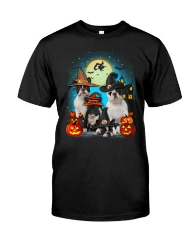 Gaea- French bulldog Halloween-1508-21