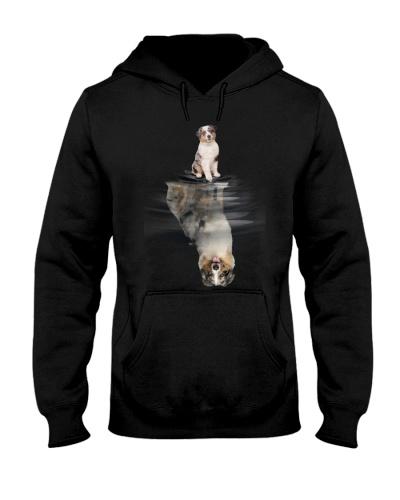 Australian Shepherd In Dream