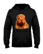 Shar Pie Light Hooded Sweatshirt thumbnail