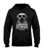 Labrador Retriever Official Hooded Sweatshirt thumbnail