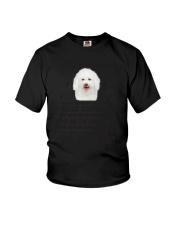 Bichon Frise Human Dad 0206 Youth T-Shirt thumbnail