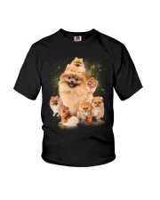 GAEA - Pomeranian Smile 0904 Youth T-Shirt thumbnail