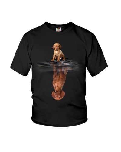 Vizsla In Dream