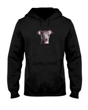Italian Greyhound Human Dad 0206 Hooded Sweatshirt thumbnail