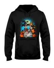 Gaea - Australian Cattle Dog Halloween - 1608 - 24 Hooded Sweatshirt thumbnail