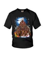 GAEA - Irish Setter Pine - 1910 - 07 Youth T-Shirt thumbnail