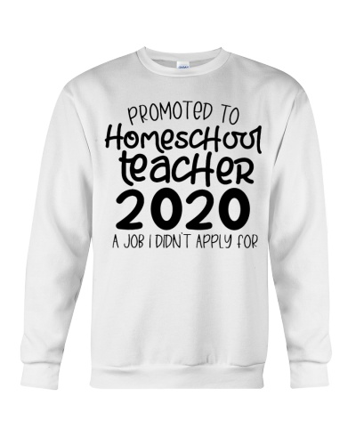 homeschool teacher 2020