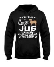 Crazy Jug Lady Hooded Sweatshirt thumbnail