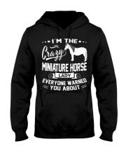 CRAZY MINIATURE HORSE LADY Hooded Sweatshirt thumbnail