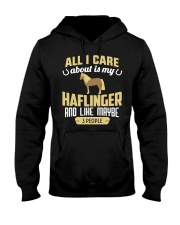 All I Care About Is My Haflinger Horse Hooded Sweatshirt thumbnail