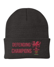 The Defending Champions 2019 Knit Beanie front