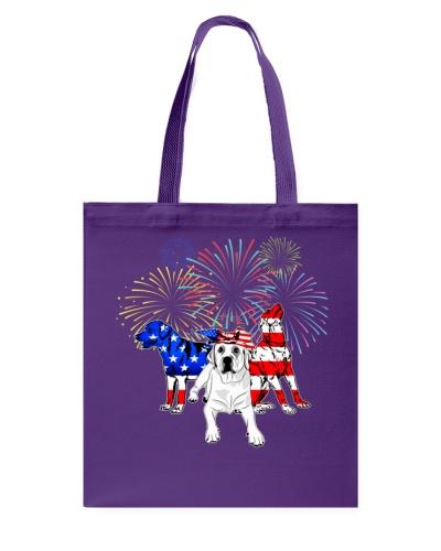 Labrador Fireworks