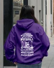 NOT SOLD IN STORES Hooded Sweatshirt lifestyle-unisex-hoodie-back-2