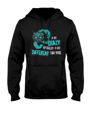 NOT SOLD IN STORES Hooded Sweatshirt thumbnail