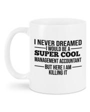 Accountant Mug 19 Mug back