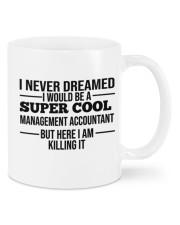 Accountant Mug 19 Mug front