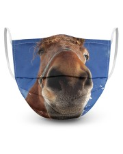 Horse Mask -2 3 Layer Face Mask - Single front