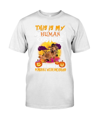 this is my human costume i'm really a pumbroke