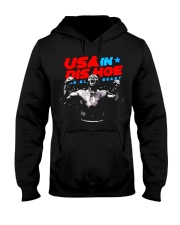 USA In Dis Hoe T Shirts Hoodie Sweatshirt Hooded Sweatshirt thumbnail