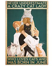 Cat Crazy Cat Lady Born In JUNE 11x17 Poster front
