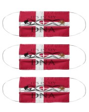 Denmark in my DNA Cloth Face Mask - 3 Pack front
