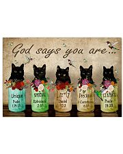 Cat God Say You Are PDN-NTH 17x11 Poster front