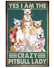 Crazy Pitbull Lady 11x17 Poster front