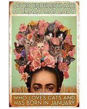 Cat Frid Crazy Cat Lady Born In January 11x17 Poster front