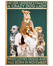 Dog Crazy Dog Lady Born In November 11x17 Poster front