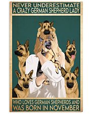 Crazy German Shepherd november 11x17 Poster front