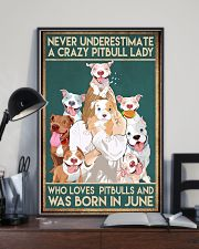 Crazy Pitbull Lady June 11x17 Poster lifestyle-poster-2
