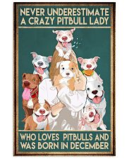 Crazy Pitbull Lady December 11x17 Poster front